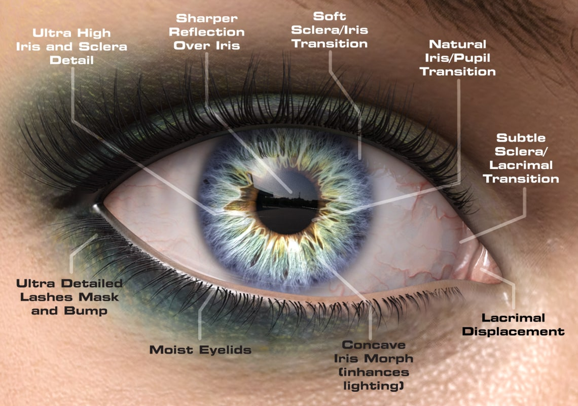 Macro Eyes Product Features
