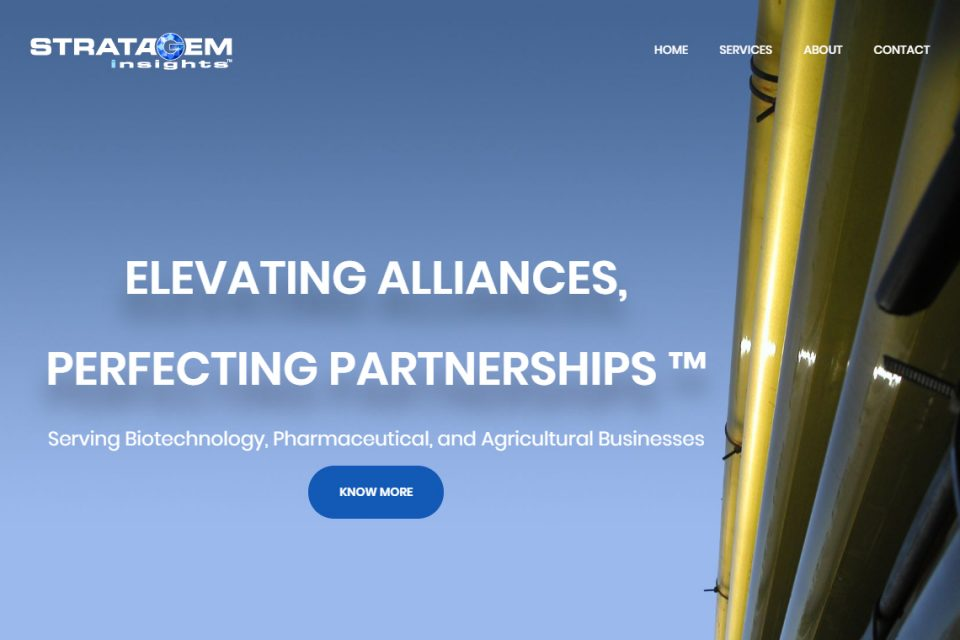 Stratagem Insights Home Page